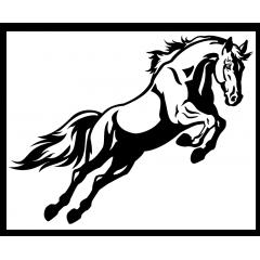 hevostarra hyppäävä